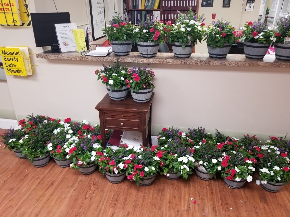 Flower pots displayed to be given out to nursing team at Westminster Palms.